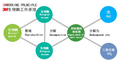 3M生物酶除甲醛原理